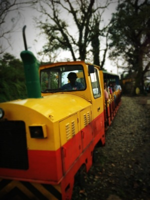 The Toy Train outside the Raja's Seat